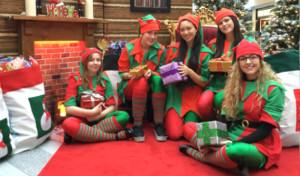 Christmas Grotto Management Staff