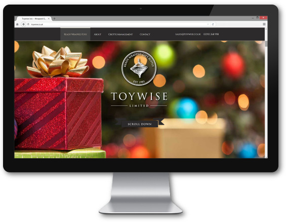 Toywise Website wrapped toys
