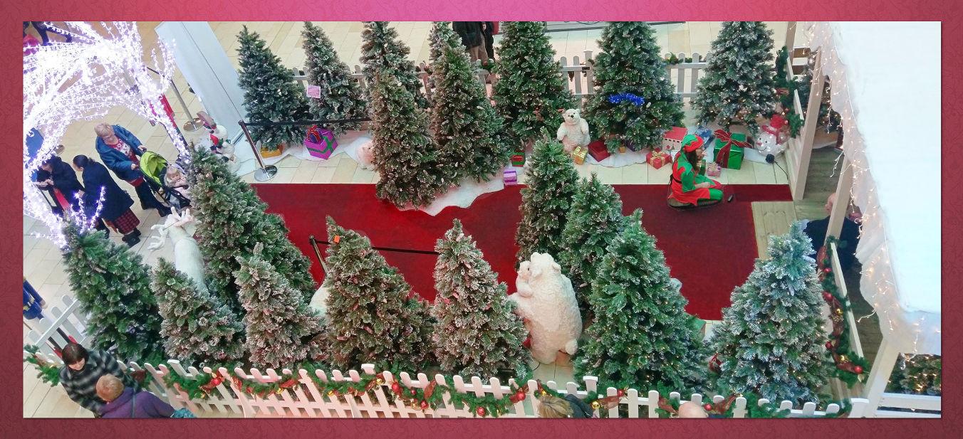 Christmas Grotto Hire