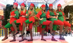 Santas Grotto Management Staff