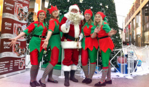 Santas Grotto Management Staff