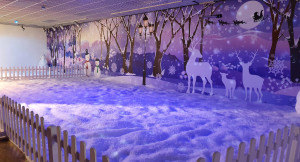 Indoor Snow Play